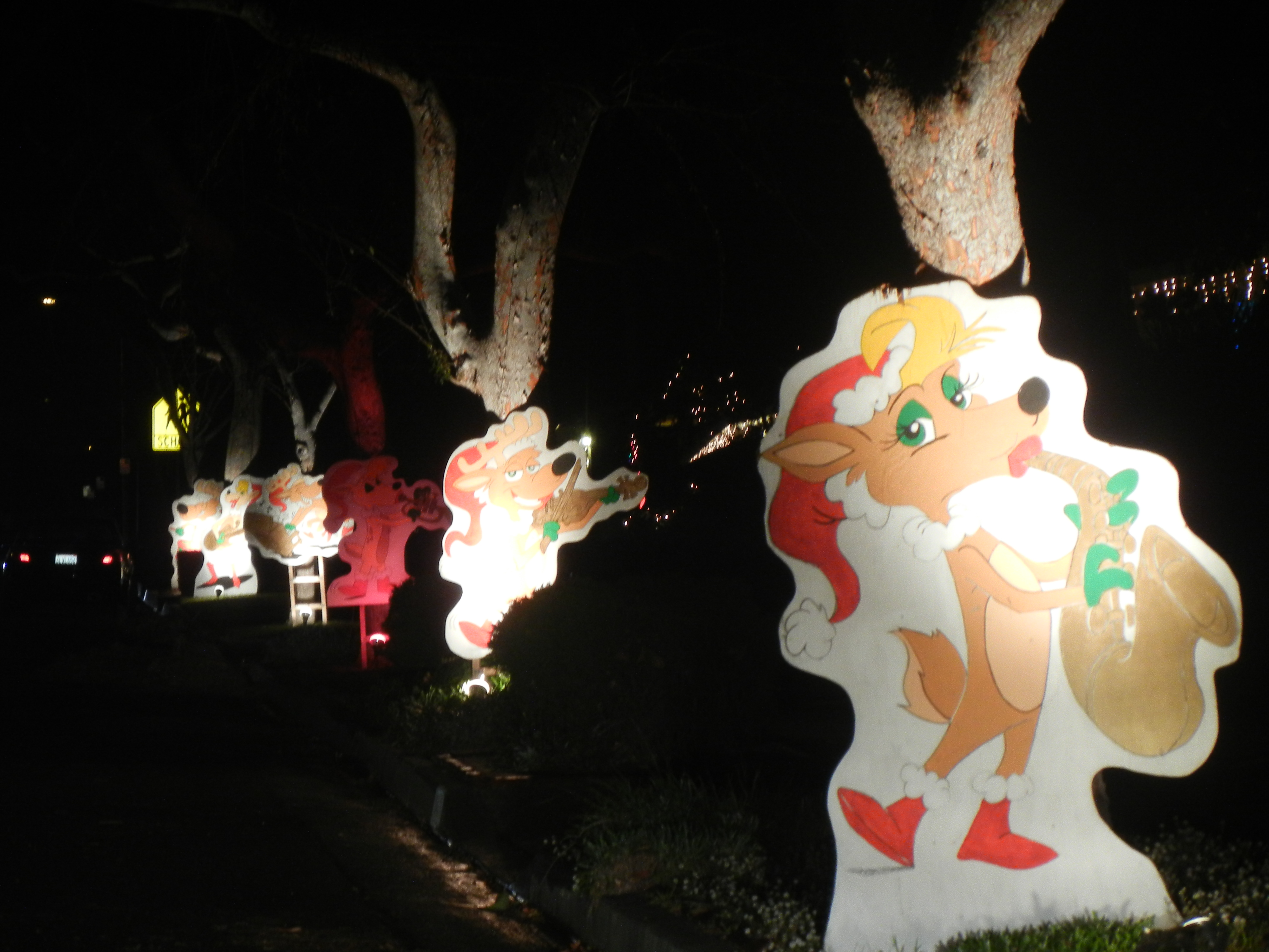 upper hastings ranch holiday light up