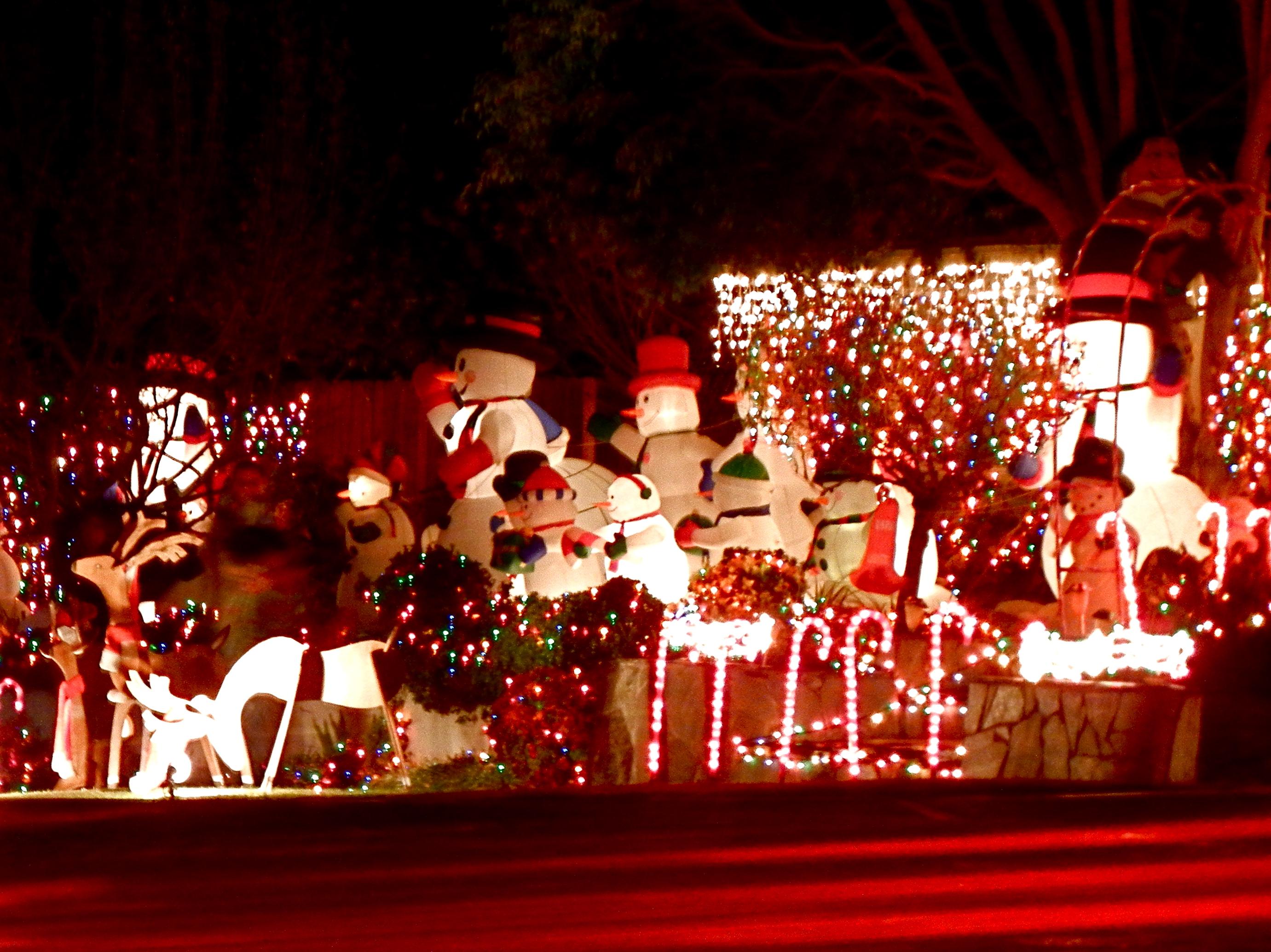 Pasadena Christmas Lights | Los Angeles Love Affair